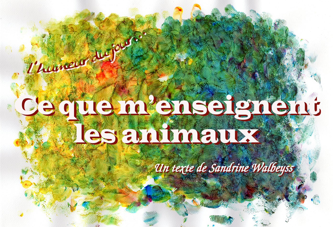 ce que m'enseignent les animaux Sandrine WALBEYSS