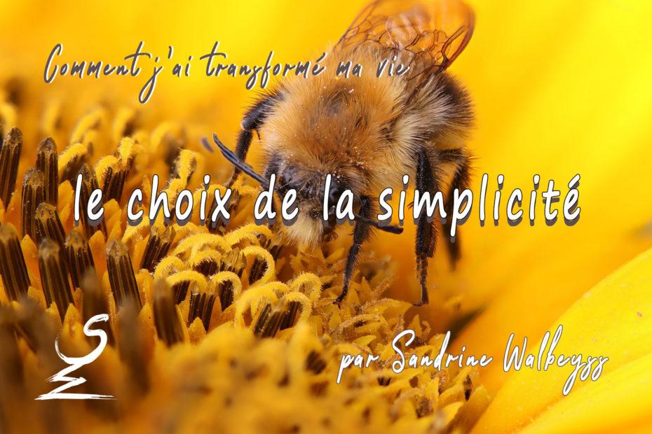 le choix de la simplicité - Sandrine Walbeyss